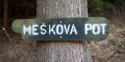 meskova-pot