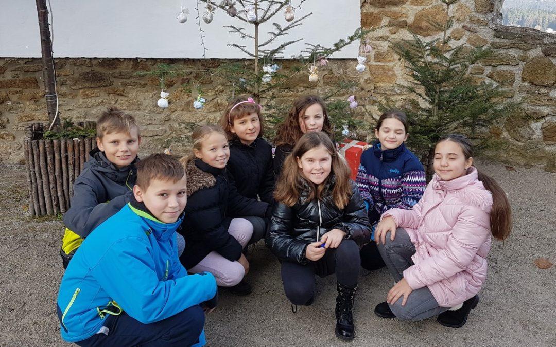 Petošolci so okrasili smrečico na Velenjskem gradu